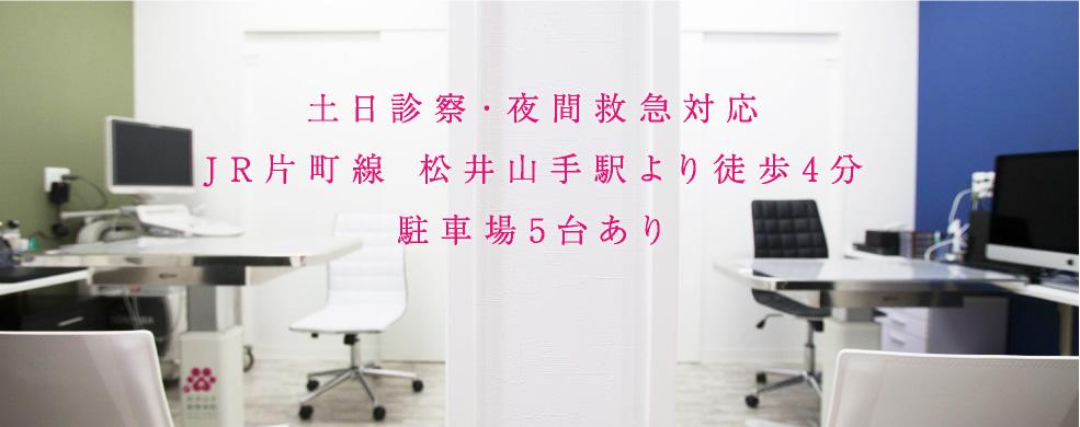 土日診察・夜間救急対応JR片町線松井山手駅より徒歩4分