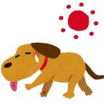 熱中症の予防と対策
