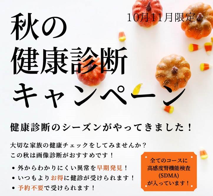 秋の健康診断キャンペーン
